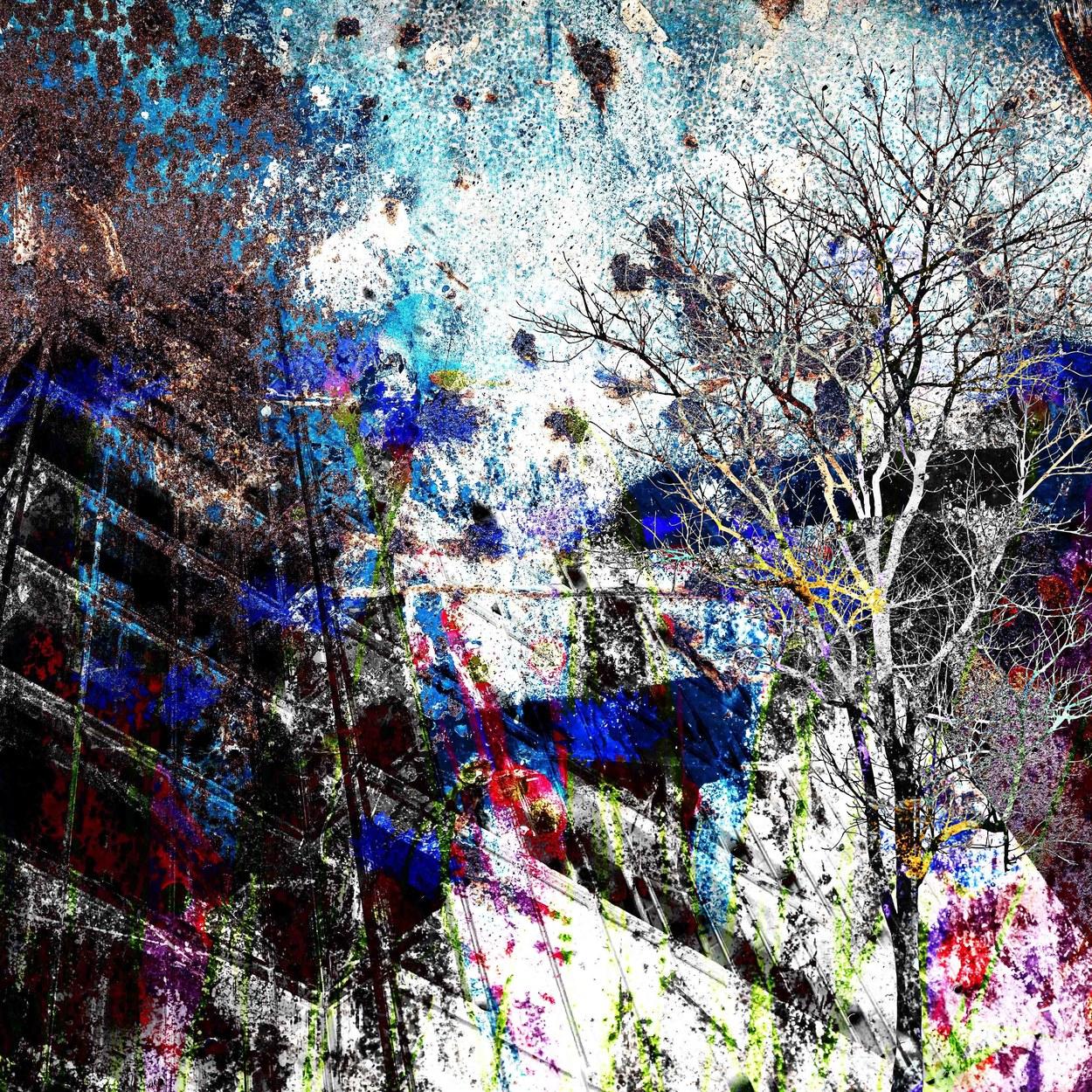 Urban Meadow II