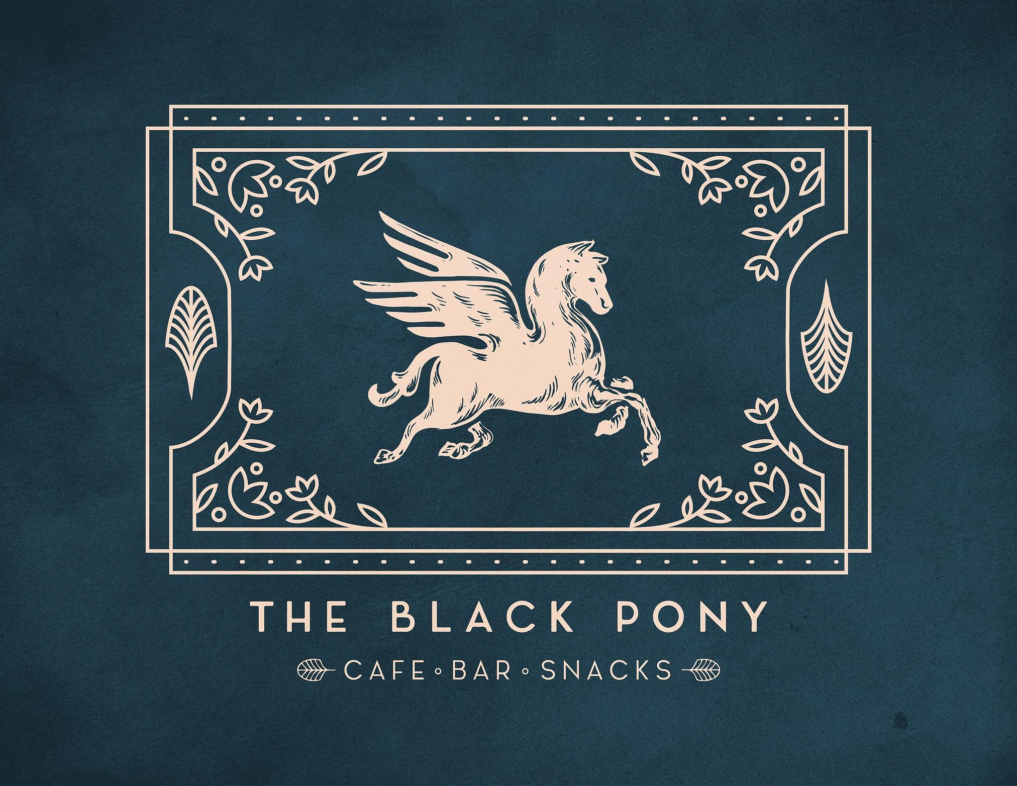 The Black Pony