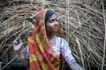 Choki Dani, Rajastan, India