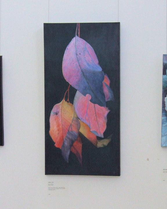 Exhibitions, pop up shows etc