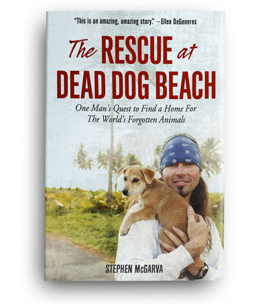 The Rescue at Dead Dog Beach | Front Cover Design 3