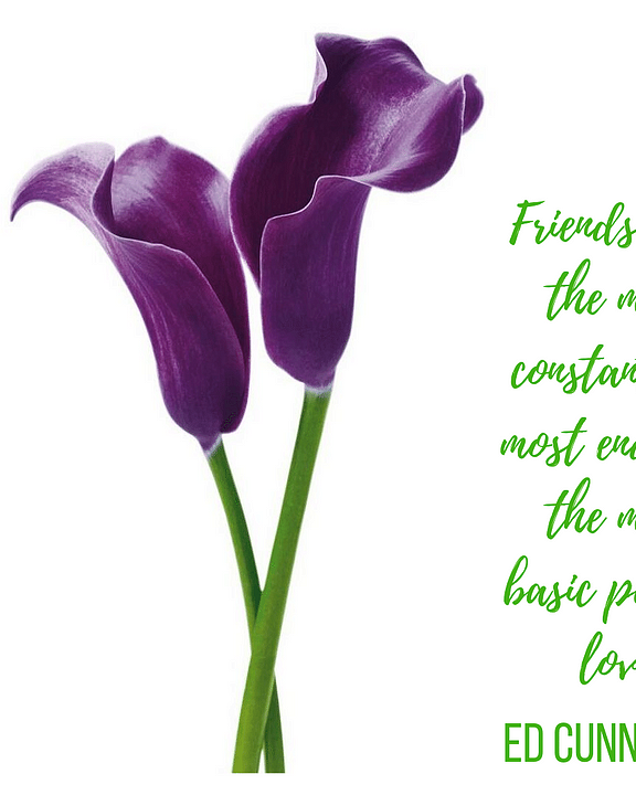 Destin Floral Designs, Social Media - Quotes of Love